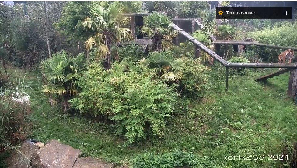 webcam Edimbourg