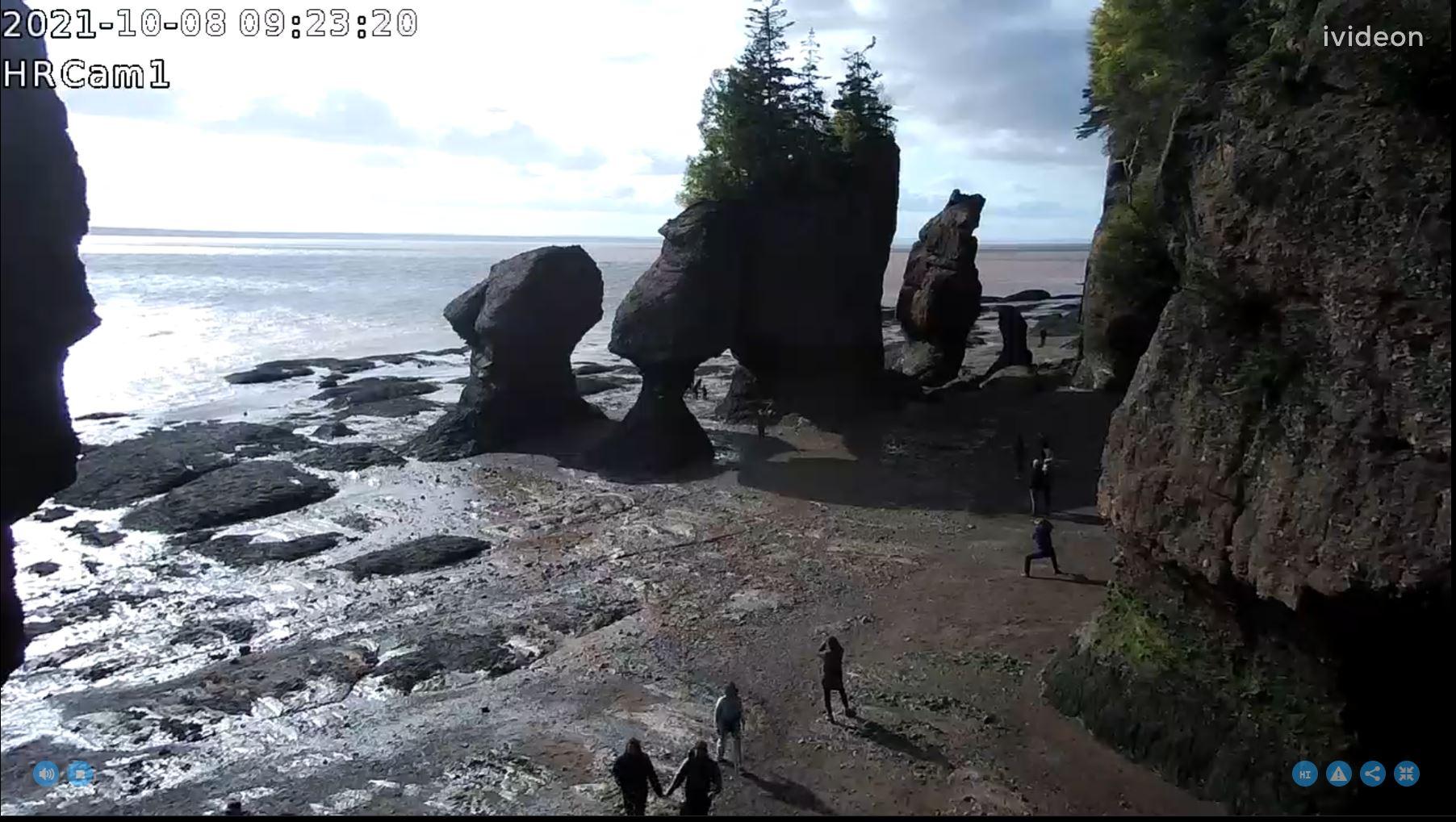 webcam Hopewell cape