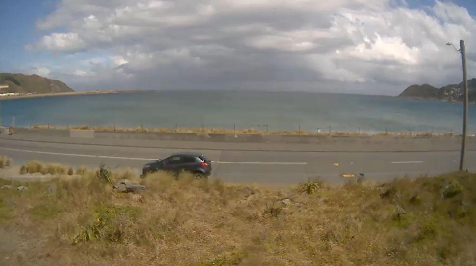 webcam Lyall Bay