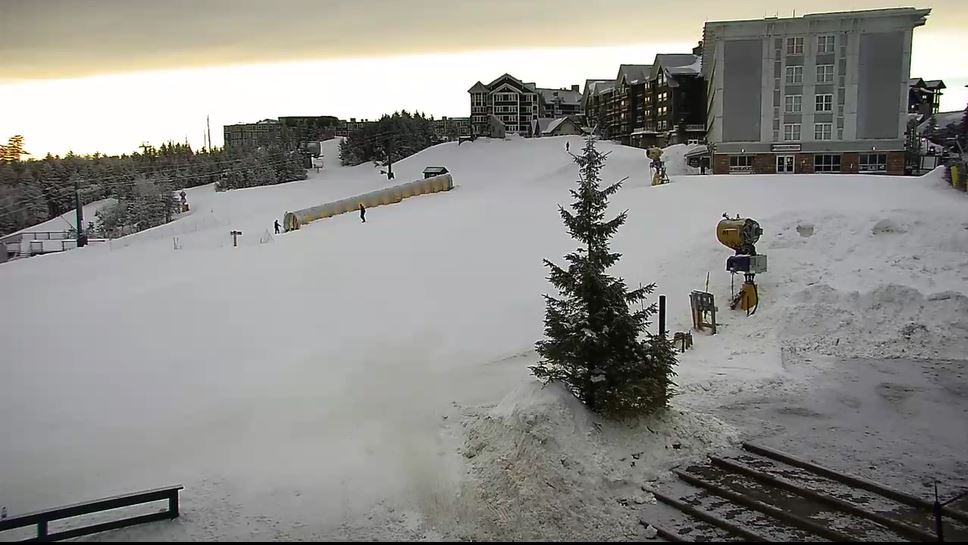 webcam Snowshoe