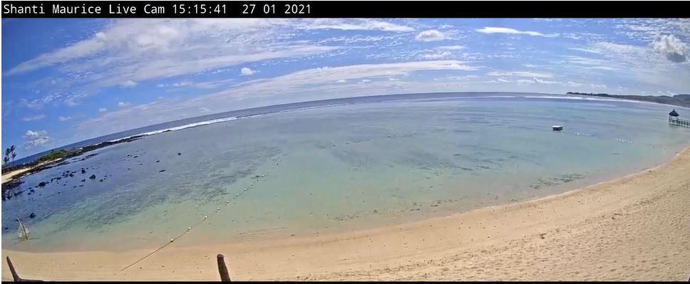 webcam Tamarin