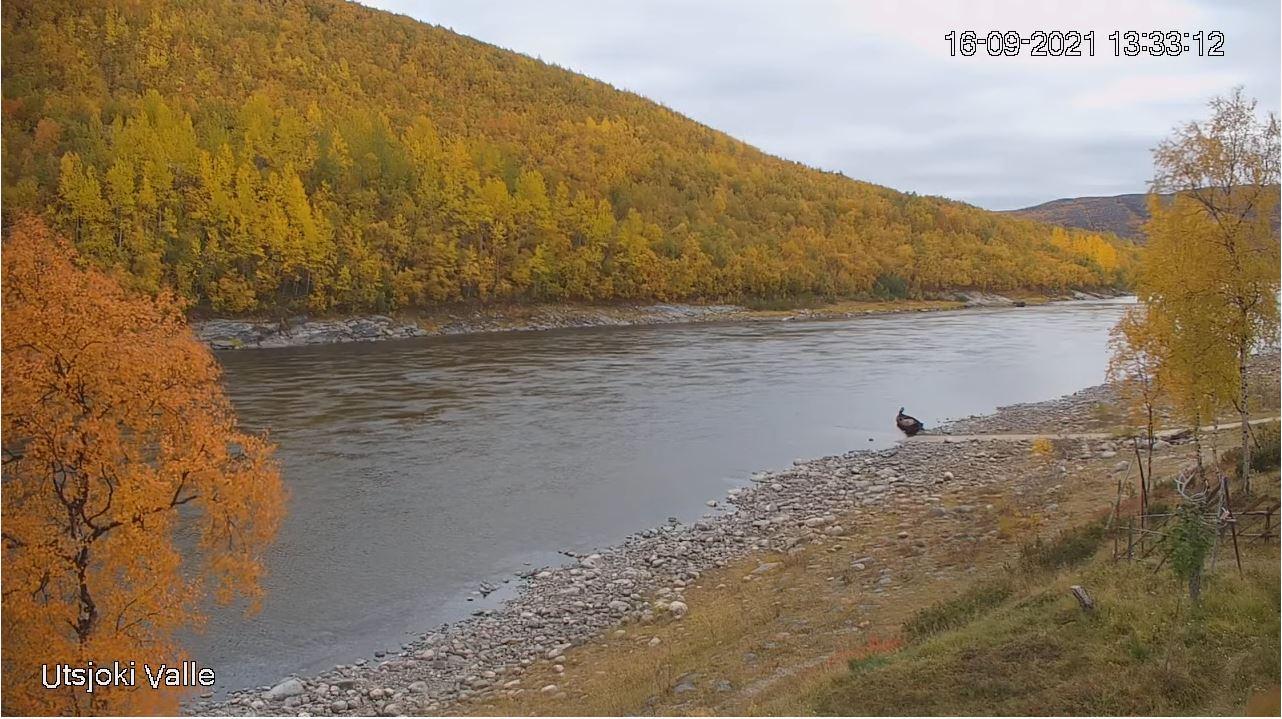 webcam Utsjoki