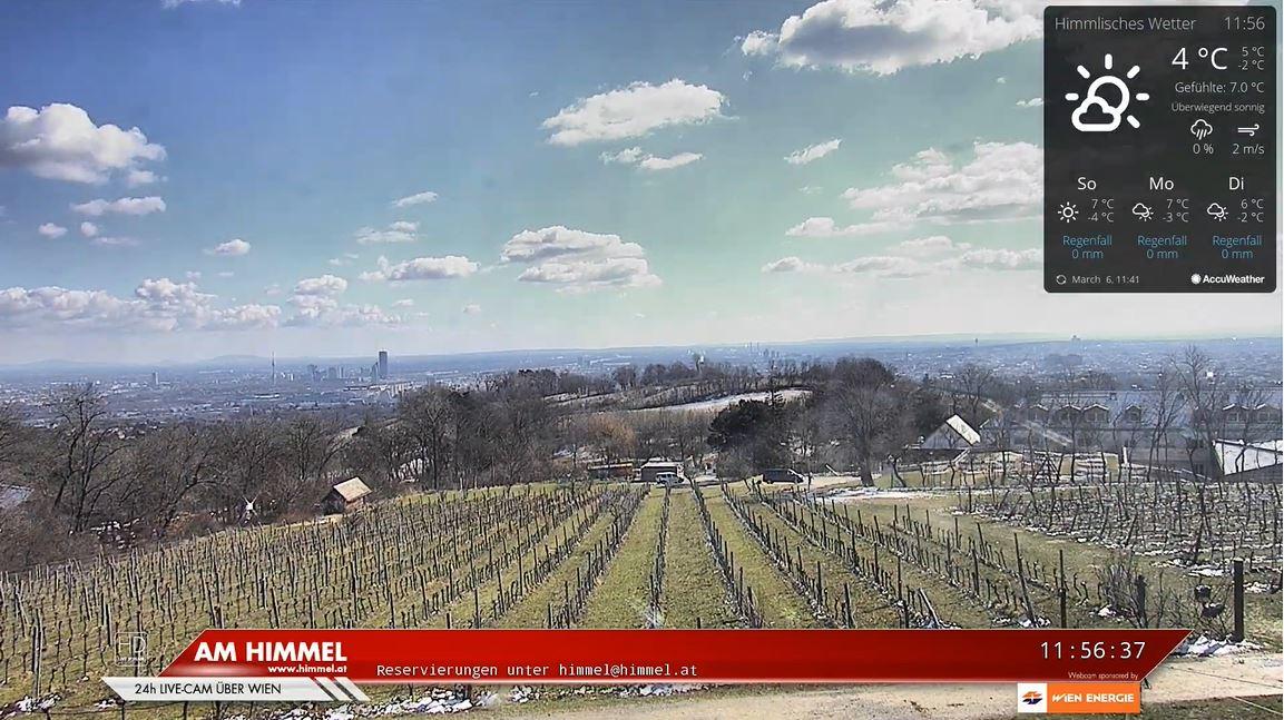 webcam Vienne