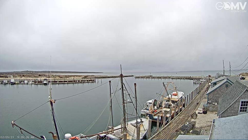 webcam Vineyard Haven