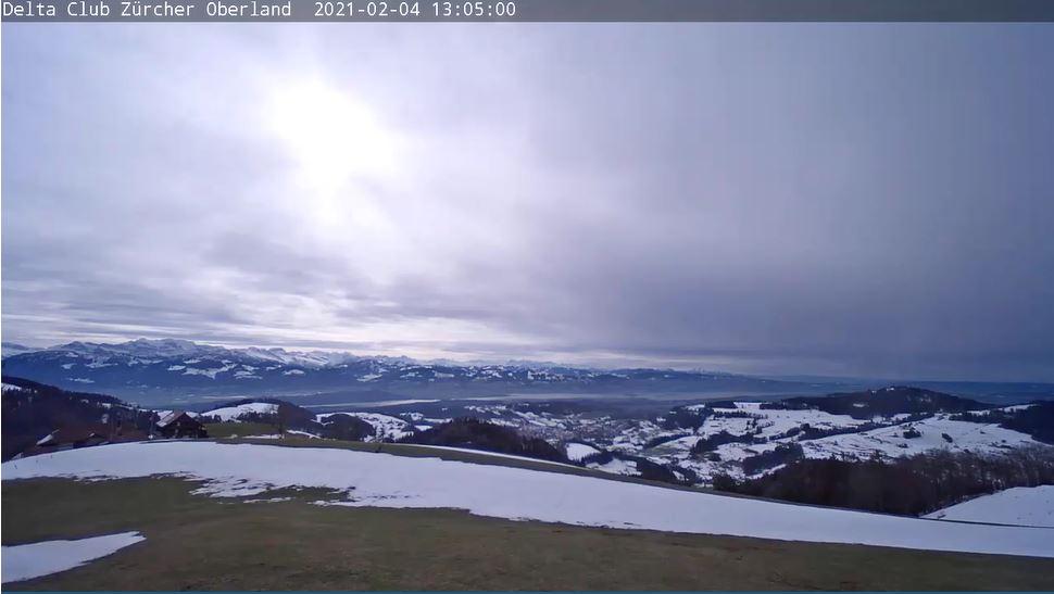 webcam Wald