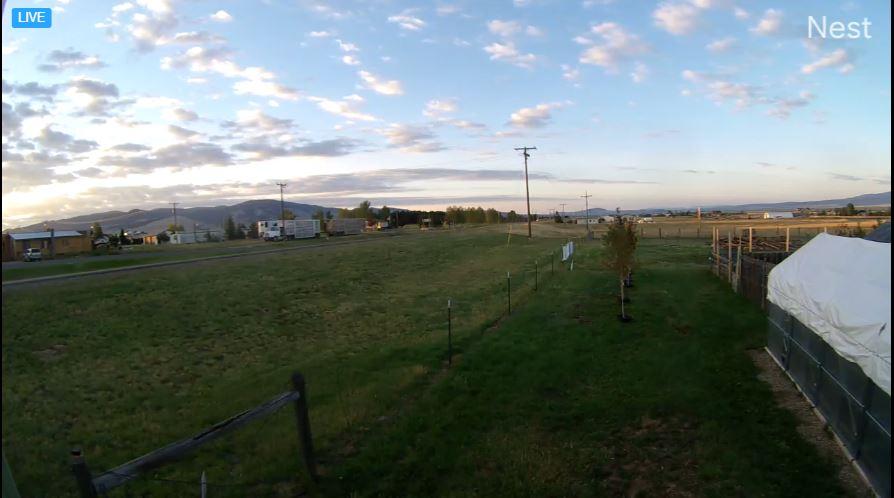 webcam White Sulphur Springs